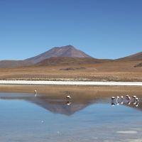 15 aprile. Laguna Cañapa, Bolivia