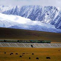 Il futuro del Tibet
